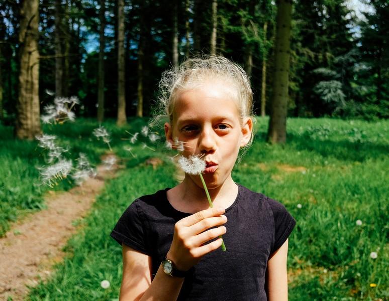 petite fille qui souffle sur un pissenlit
